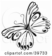 Clipart Illustration Of A Delicate Black And White Butterfly