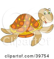 Friendly Brown Orange And Yellow Turtle