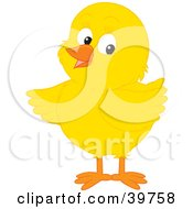 Clipart Illustration Of An Adorable Yellow Chick Pointing His Wing To The Left by Alex Bannykh