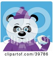 Blue Eyed Female Giant Panda Bear In Purple Throwing Snowballs