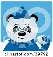 Blue Eyed Male Giant Panda Bear In Blue Throwing Snowballs