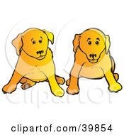 Clipart Illustration Of Two Yellow Lab Puppies Sitting During Obedience Training