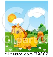 Clipart Illustration Of A Adorable Yellow Pony Resting In A Daisy Flower Patch In A Green Pasture On A Sunny Day