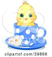 Adorable Yellow Chick In A Blue Polka Dotted Tea Cup