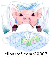 Adorable Pink Piglet Laying In Bed With A Thermometer And Tissues Sick With The Flu