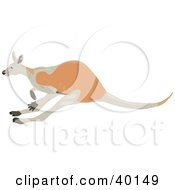 Clipart Illustration Of A Brown Kangaroo Hopping By by Dennis Holmes Designs