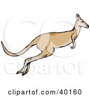 Clipart Illustration Of A Leaping Kangaroo In Profile by Dennis Holmes Designs