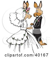 Clipart Illustration Of A Loving Kangaroo Bride And Groom Getting Married