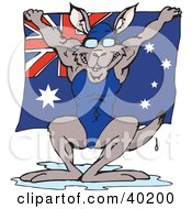 Aussie Swimmer Kangaroo Dripping Wet And Holding Up An Australian Flag