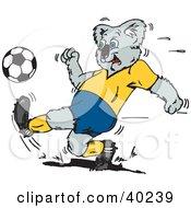 Koala Kicking A Soccer Ball During A Game