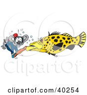 Clipart Illustration Of A Scuba Diving Koala Facing A Large Fish by Dennis Holmes Designs
