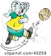 Clipart Illustration Of A Soccer Koala Kicking A Ball Hard by Dennis Holmes Designs