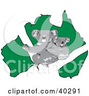 Clipart Illustration Of A Koala And Baby Over A Green Australian Map by Dennis Holmes Designs