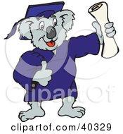 Koala Graduate Holding Up A Diploma Certificate