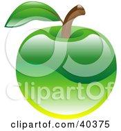 Clipart Illustration Of A Shiny Organic Green Apple by AtStockIllustration