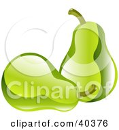 Clipart Illustration Of Shiny Organic Green Pears