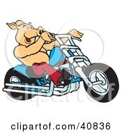 Clipart Illustration Of A Happy Pig Riding A Red Chopper