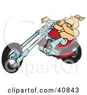 Happy Shirtless Hog Riding A Red Chopper