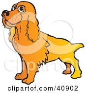 Clipart Illustration Of A Happy Golden Cocker Spaniel Dog by Snowy