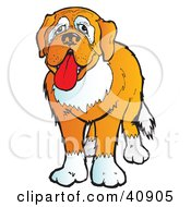 Clipart Illustration Of An Adorable And Friendly Brown And White St Bernard Dog by Snowy