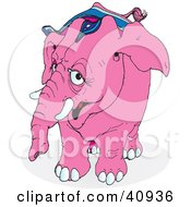 Clipart Illustration Of A Curious Pink Circus Elephant In Riding Gear