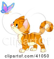 Clipart Illustration Of An Adorable Orange Kitten Watching A Butterfly by Pushkin