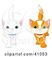 Clipart Illustration Of White And Orange Kittens Walking Forward