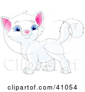 Clipart Illustration Of An Adorable Blue Eyed White Kitten Looking At The Viewer