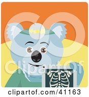 Clipart Illustration Of A Koala Bear Radiologist Character Holding An Xray by Dennis Holmes Designs