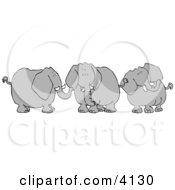 Three Elephants With Tusks Clipart