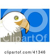 Clipart Illustration Of A Majestic Bald Eagle Head Over A Blue Background