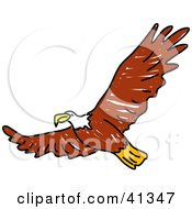 Clipart Illustration Of A Flying Brown Bald Eagle With Its Wings Spanned