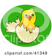 Clipart Illustration Of A Yellow Chick Hatchling Popping Out Of An Egg On Green Grass by Prawny