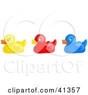 Clipart Illustration Of A Row Of Yellow Red And Blue Rubber Ducks