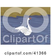 Clipart Illustration Of A Beautiful Mute Swan Landing On Water And Splashing