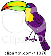 Clipart Illustration Of A Purple Toucan With A Colorful Beak And White Chest