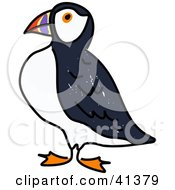 Clipart Illustration Of A Proud Puffin Bird In Profile by Prawny