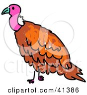 Clipart Illustration Of A Pink Headed Vulture by Prawny