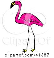 Sketched Pink Flamingo Standing