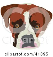 Clipart Illustration Of A Boxer Dog Face