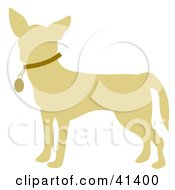 Clipart Illustration Of A Beige Profiled Chihuahua Dog Wearing A Brown Collar