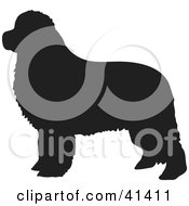 Clipart Illustration Of A Black Silhouetted Newfoundland Dog Profile by Prawny #COLLC41411-0089