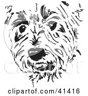 Clipart Illustration Of A Black And White Sketch Of A Terrier Dog Face