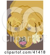 Clipart Illustration Of A Tired Golden Labrador Dog Resting by Prawny
