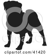 Clipart Illustration Of A Black Silhouetted Pug Dog Profile by Prawny