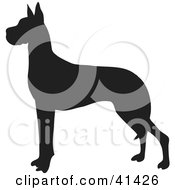 Clipart Illustration Of A Black Silhouetted Great Dane Dog Profile