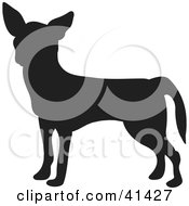 Clipart Illustration Of A Black Silhouetted Chihuahua Dog Profile by Prawny