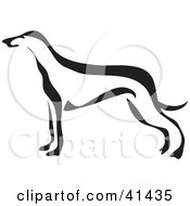 Clipart Illustration Of A Black And White Paintbrush Styled Image Of A Greyhound