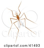 Clipart Illustration Of A Resting Mosquito