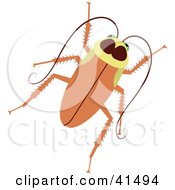 Clipart Illustration Of A Brown Cockroach by Prawny
